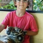 Pedro e o Tigre em Chiang Mai