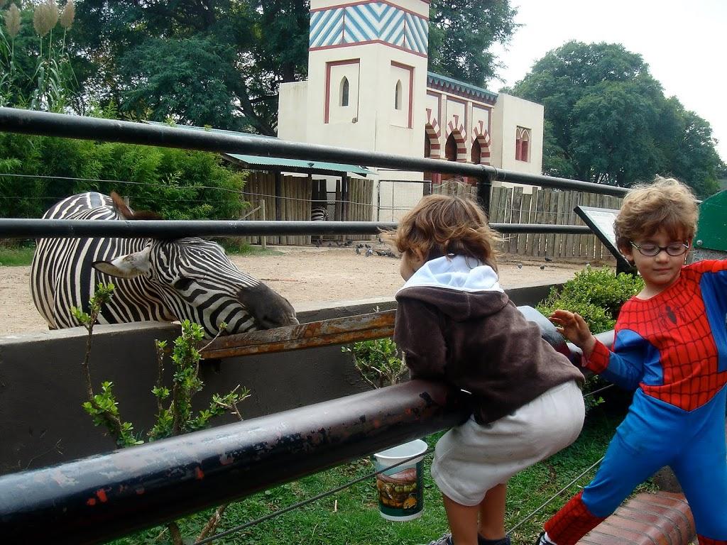 Dicas de Buenos Aires com Crianças, por quem mora lá!
