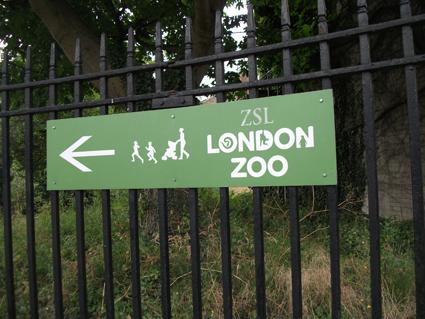 Londres com crianças: zoológico