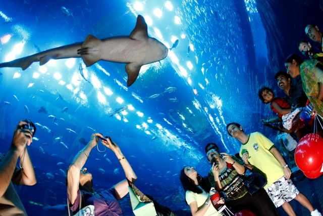 10 coisas legais para fazer em Dubai com Crianças