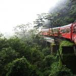 Passeio de trem que sai de Curitiba e vai para Morretes
