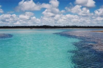 Mar do litoral de Alagoas