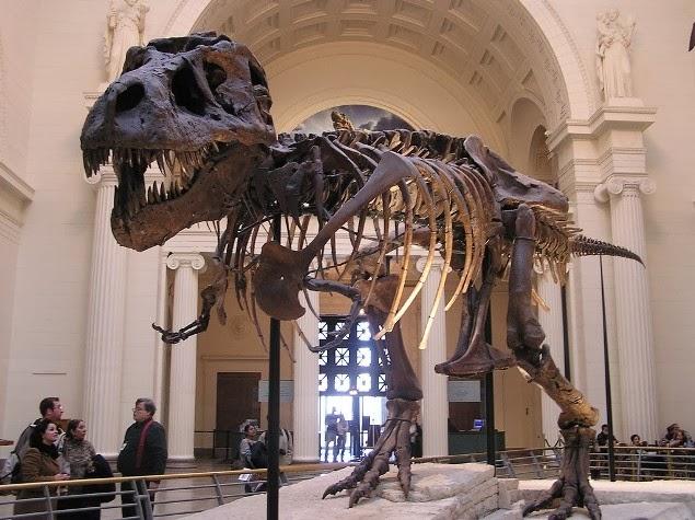 Top 5 Melhores Museus para Crianças nos EUA