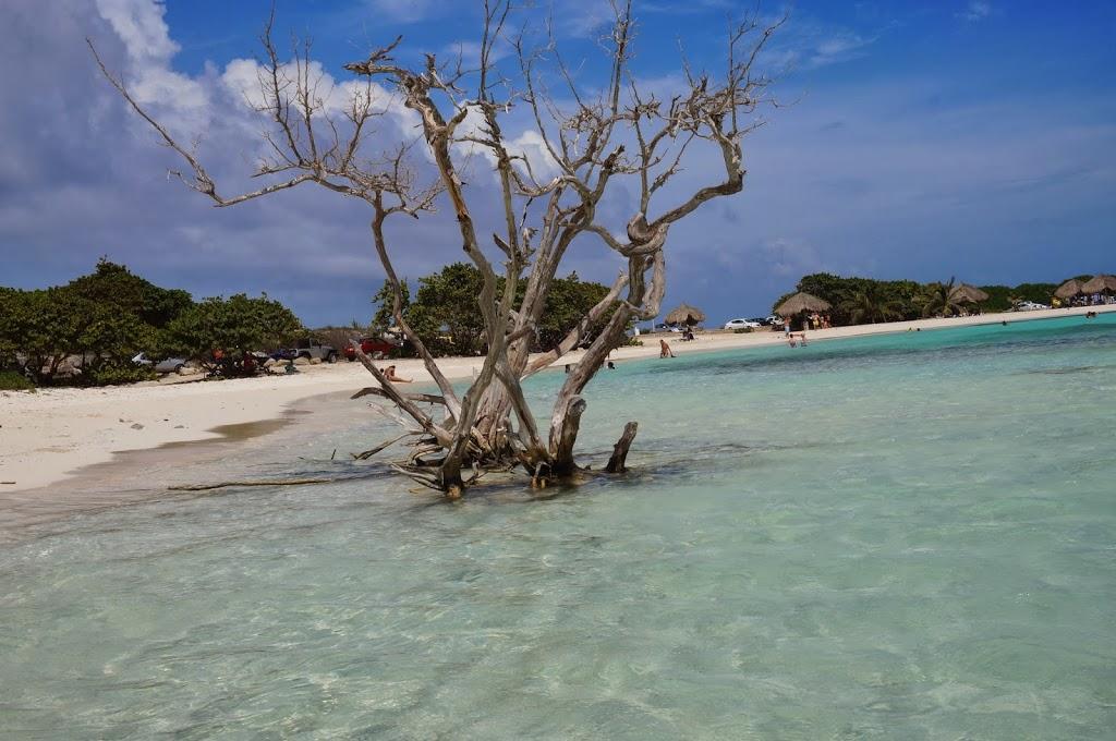Aruba com crianças – 10 dicas