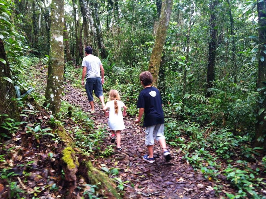 Guaraqueçaba: trilhas, cachoeiras e comida boa no litoral do Paraná