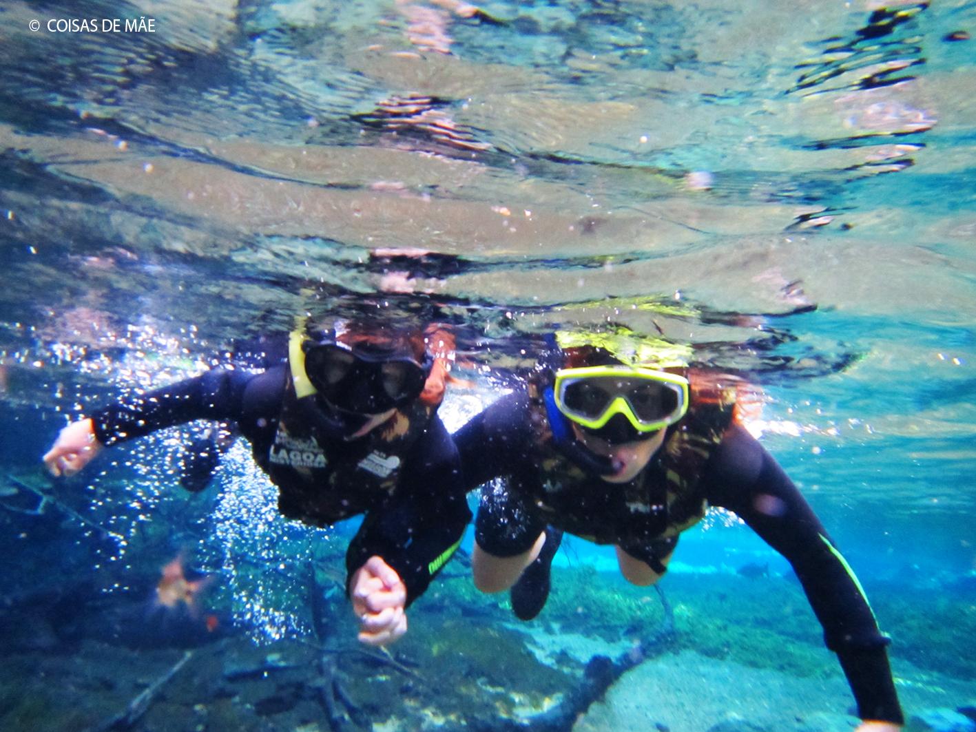Flutuação e mergulho em Bonito
