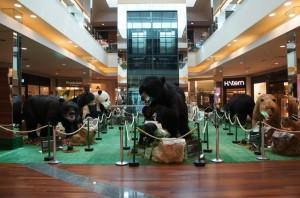 ParkShoppingSãoCaetano - Ursos pelo Mundo (1)