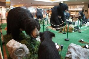ParkShoppingSãoCaetano - Ursos pelo Mundo (2)