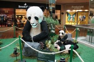 ParkShoppingSãoCaetano - Ursos pelo Mundo (7)