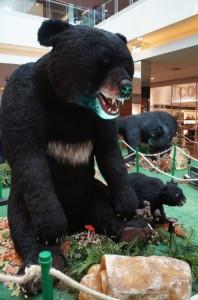 ParkShoppingSãoCaetano - Ursos pelo Mundo (9)