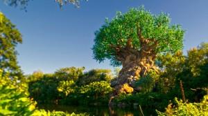 Disney com Crianças Tree of Life Animal Kingdom