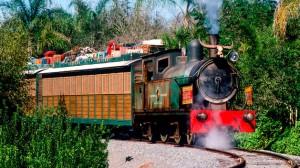 Disney com Crianças Wildlife Express Train Animal Kingdom