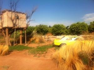 Casinha na árvore com um carro antigo fazem parte do cenário exótico do hotel