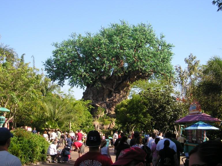 Disney's Animal Kingdom para crianças pequenas