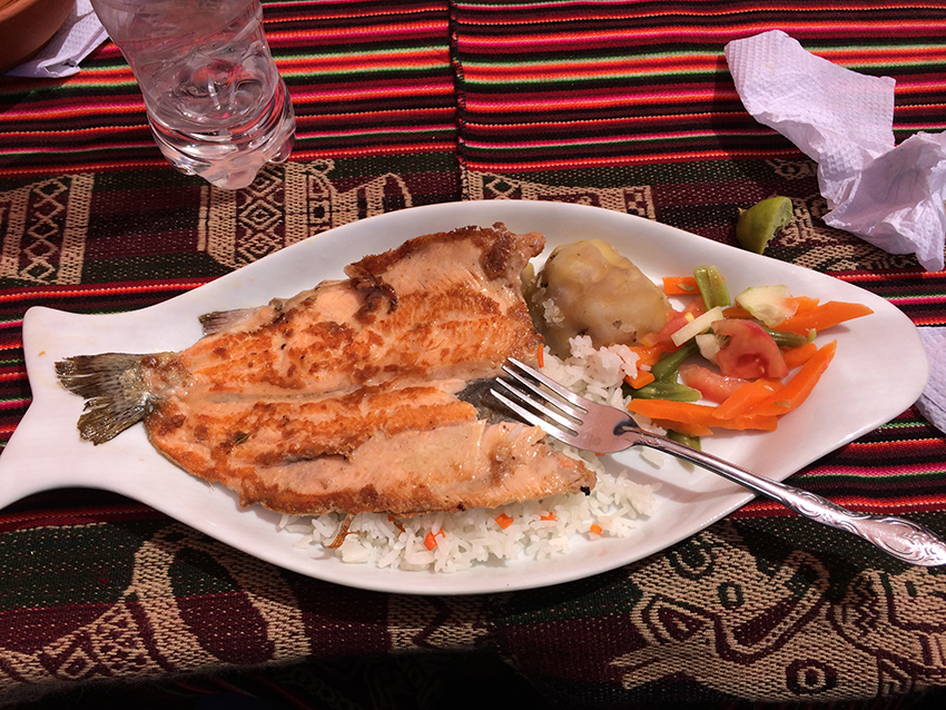 Truta grelhada - prato típico da região