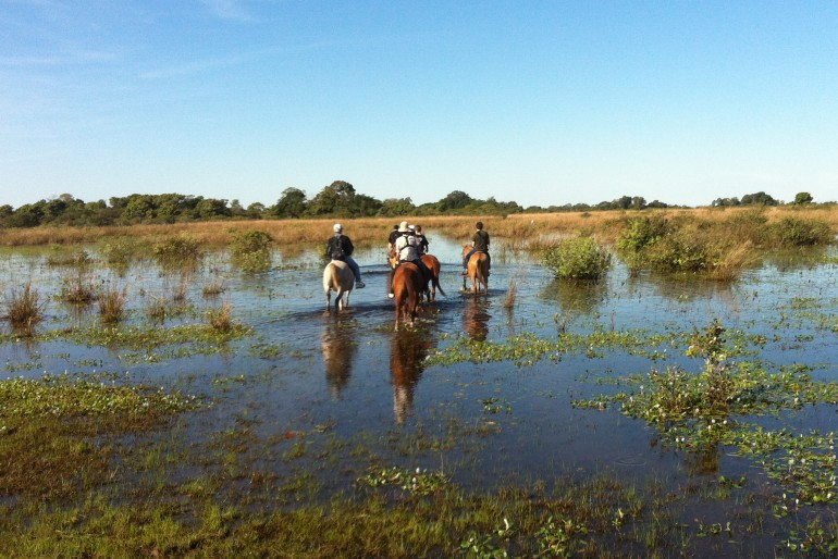 Hotel no Pantanal com Crianças: Xaraés
