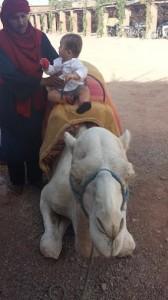 1 ano de vida e 22 voos kai camelo viajo com filhos