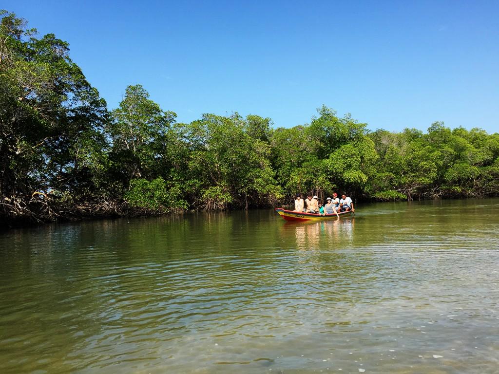 Natureza Barra Grande