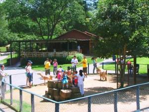 São Paulo com crianças Fazendinha Cia dos Bichos