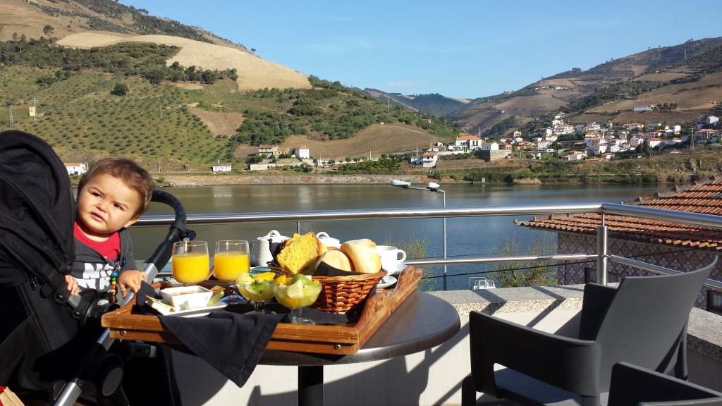 Vistas do Hotel Folgosa Douro