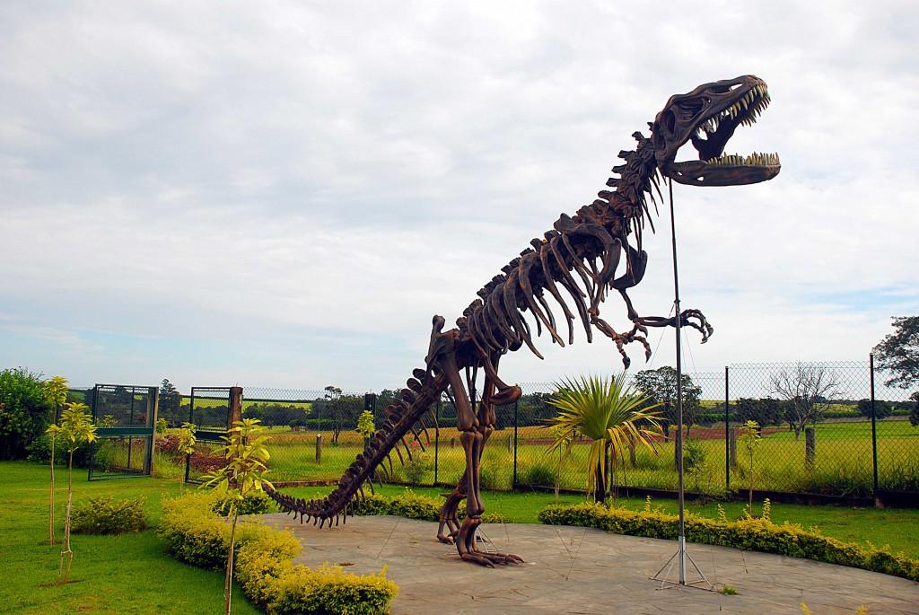 Fundação CEU Brotas esqueleto dinossauro fóssil