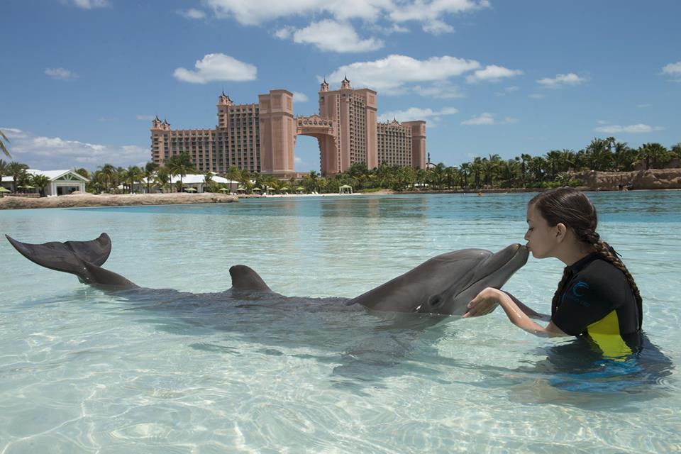Atlantis Resort Bahamas com crianças_Dolphin Cay_Nadar com golfihos