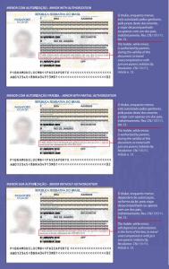 Alteração passaporte - campo autorização