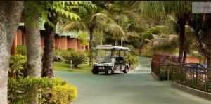 Os carrinhos de golfe que fazem o leva e traz dos hóspedes