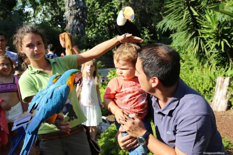 Lisboa: Zoológico com crianças