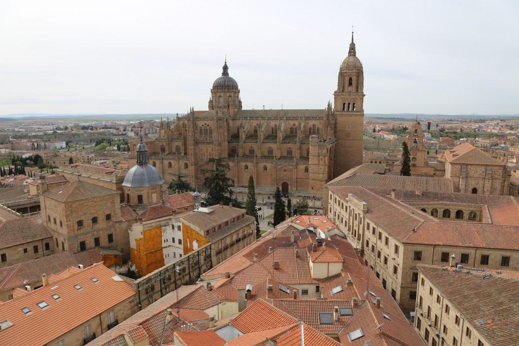 Vistas das Catedrais desde as torres da Clerecía
