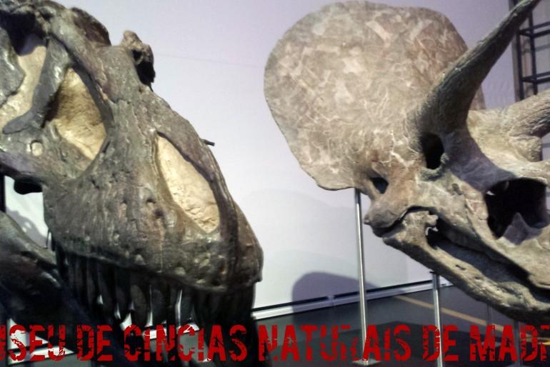 Madrid com crianças: Museu de Ciências Naturais