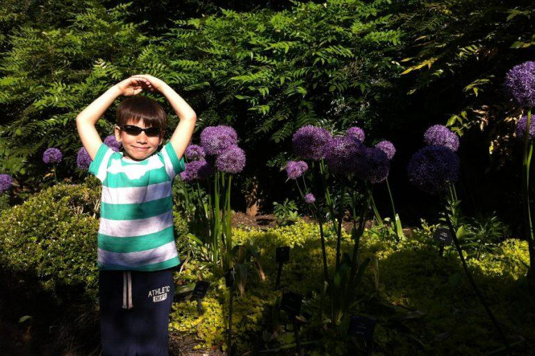Londres com crianças: Kew Gardens
