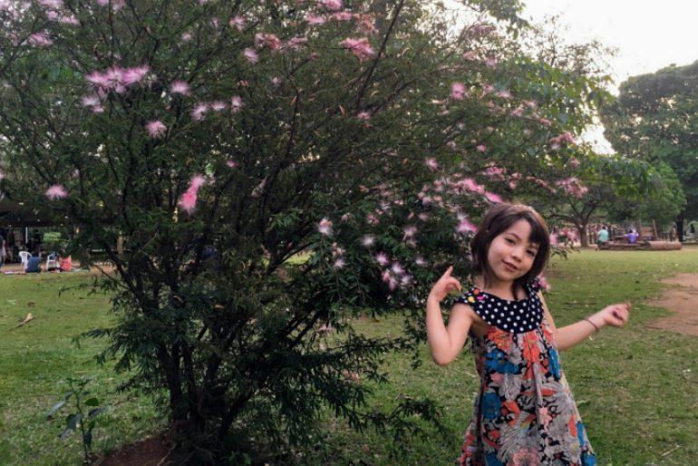 9 programas imperdíveis para férias com crianças em São Paulo