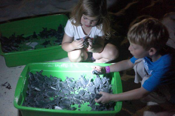 Tartarugas - Cancun com FIlhos