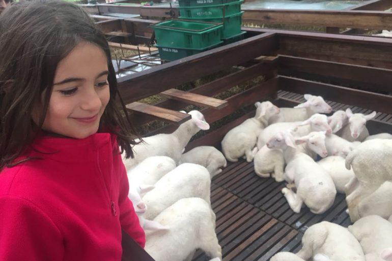 Parque da Ovelha – Bento Gonçalves com Crianças