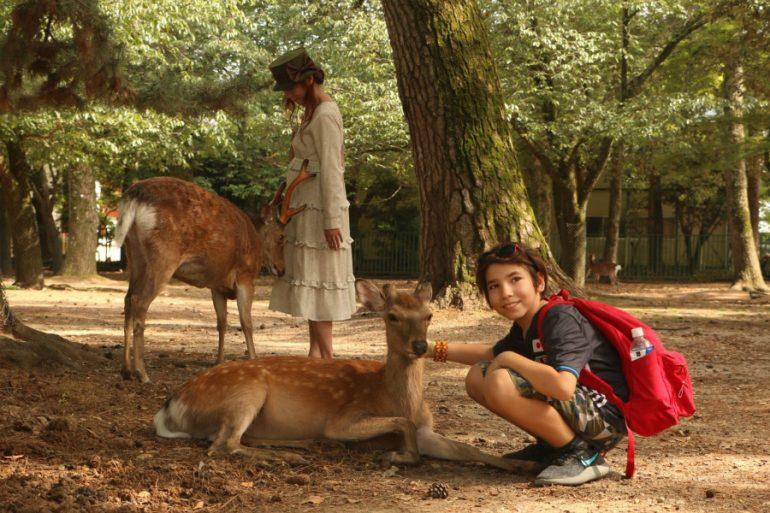 Japão com crianças: Nara, seus cervos e um buda gigante