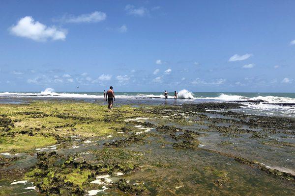 Baía Formosa - Guaju